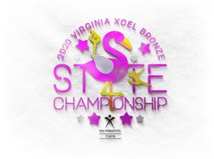 2020 VA USAG XCEL Bronze State Meet
