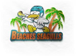 Beaches Seagulls