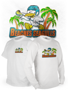 Beaches Seagulls